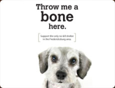 SPCA ad showing a forlorn dog and the title Throw me a bone here